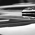 1969 Chevrolet Camaro 427 Hood Emblem - 0879bw by Jill Reger