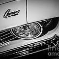 1969 Chevrolet Camaro In Black And White by Paul Velgos