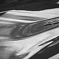 1969 Chevrolet Corvette Roadster 427 Hood Emblem -0654bw by Jill Reger