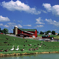 1990s Amish Family Farm Bunker Hill by Animal Images