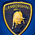 1995 Lamborghini Diablo Emblem by David Patterson