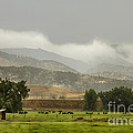 1st Day Of Rain Great Colorado Flood by James BO Insogna