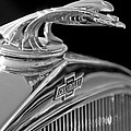 1931 Chevrolet Hood Ornament by Jill Reger