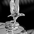 1932 Alvis 6 Speed 20 Sa 4-door Tourer Hood Ornament by Jill Reger