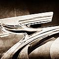 1937 Chevrolet 2 Door Sedan Hood Ornament by Jill Reger