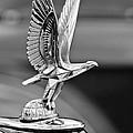 1940 Packard Custom Super-eight 180 Convertible Victoria Hood Ornament by Jill Reger