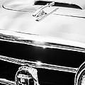 1953 Nash-healey Convertible Grille Emblem by Jill Reger
