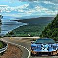 2006 Ford Gt by Sylvia Thornton