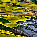 #9 At Chambers Bay Golf Course by David Patterson