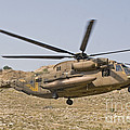 A Ch-53 Yasur 2000 Of The Israeli Air by Ofer Zidon