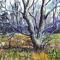 A Tree For Thee by Carol Wisniewski