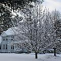 A Wintery View Along Conifer Drive In Burnt Hills by James Connor