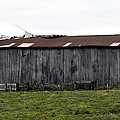 Abandoned Barn Kentucky Usa by Sally Rockefeller