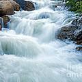 Alluvial Fan Falls On Roaring River In Rocky Mountain National Park by Fred Stearns