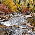 American Fork Canyon Creek In Autumn - Utah by Gary Whitton