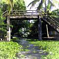 An Old Stone Bridge Over A Canal by Ashish Agarwal