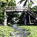 An Old Stone Bridge Over A Canal In Alleppey by Ashish Agarwal