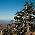 Appalachian Mountains From Mount Mitchell  by Alex Grichenko