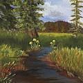 Arizona Stream  by Jamie Frier