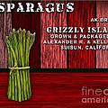 Asparagus Farm by Marvin Blaine