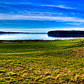 #2 At Chambers Bay Golf Course - Location Of The 2015 U.s. Open Tournament by David Patterson