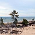 At The Beach by Linda Kerkau