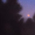 August Moon by Robin Street-Morris