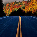 Autumn Colors And Road  by Mark Duffy