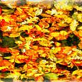 Autumn Leaves 2 by George Rossidis