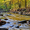 Autumn Stream by Frozen in Time Fine Art Photography