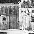 Barn by Tracy Winter