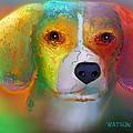 Beagle by Marlene Watson