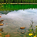 Beauvert Lake In Jasper National Park-alberta-canada by Ruth Hager