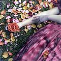 Bedded In Petals by Joana Kruse