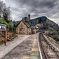 Berwyn Railway Station by Adrian Evans