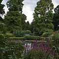 Beth Chatto Gardens by Sean Foreman