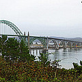 Big River Bridge Oregon Coast by Tom Janca