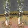 2 Birch Groves by Carolyn Doe