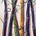 Black Bamboo by Randy Burns