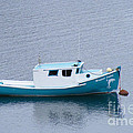 Blue Moored Boat by Barbara Griffin