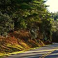 Blue Ridge Parkway by Les Palenik