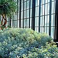 Blue Garden by Crystal Wightman