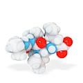 Boceprevir Hepatitis Drug Molecule by Ramon Andrade 3dciencia