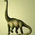 Brachiosaurus by Spencer Sutton