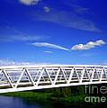 Bridge by Nina Ficur Feenan