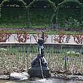 Brooklyn Botanical Gardens Fountain by John Telfer