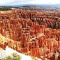 Bryce Canyon Vista by Ilan Meiri