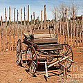 Buckboard Pipe Spring National Monument by Fred Stearns
