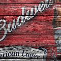 Budweiser by Joe Hamilton