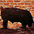 Bull At Sunrise by Werner Lehmann